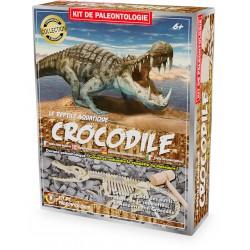 EXCAVATION KIT: CROCODILE